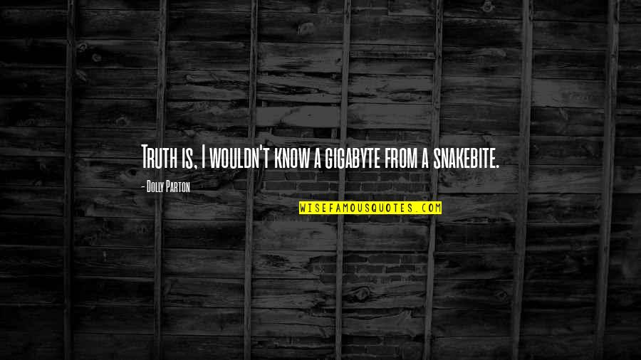 Now I Know The Truth Quotes By Dolly Parton: Truth is, I wouldn't know a gigabyte from