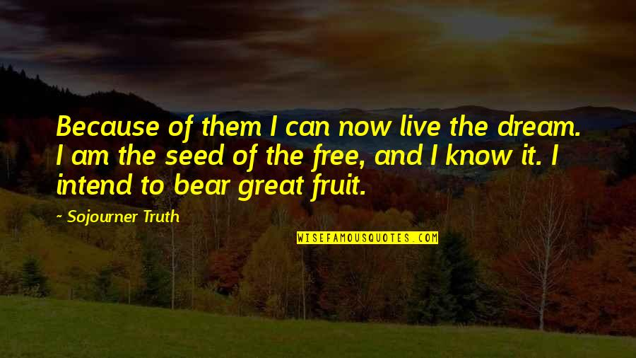 Now I Know The Truth Quotes By Sojourner Truth: Because of them I can now live the
