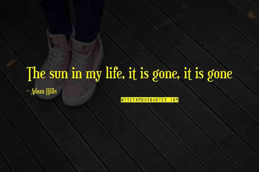 Now That Your Gone Quotes By Adam Hills: The sun in my life, it is gone,
