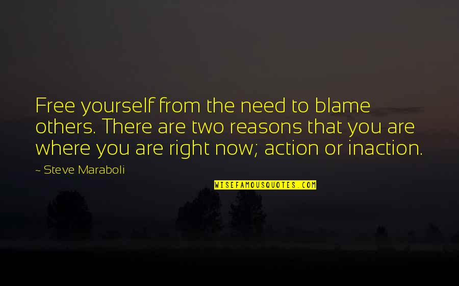 Now You Are Free Quotes By Steve Maraboli: Free yourself from the need to blame others.