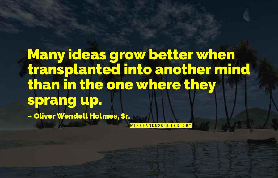Nuclear Fallout Quotes By Oliver Wendell Holmes, Sr.: Many ideas grow better when transplanted into another
