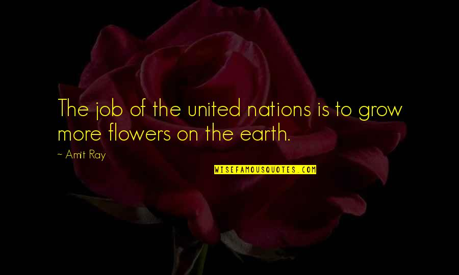 Nuclear Proliferation Quotes By Amit Ray: The job of the united nations is to