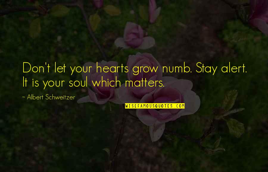 Numb Quotes By Albert Schweitzer: Don't let your hearts grow numb. Stay alert.