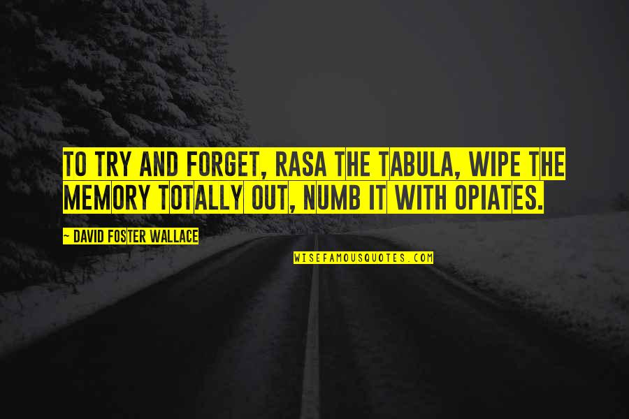 Numb Quotes By David Foster Wallace: To try and forget, rasa the tabula, wipe