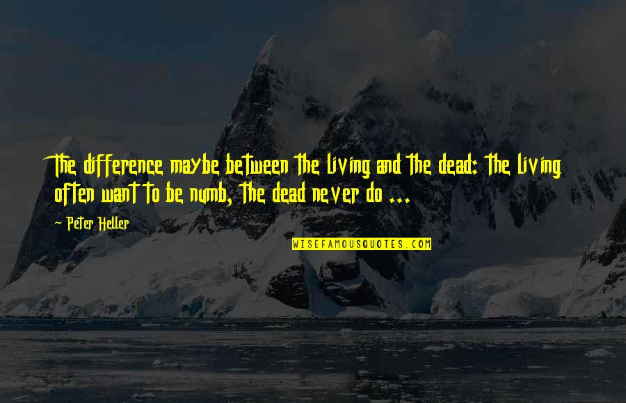 Numb Quotes By Peter Heller: The difference maybe between the living and the