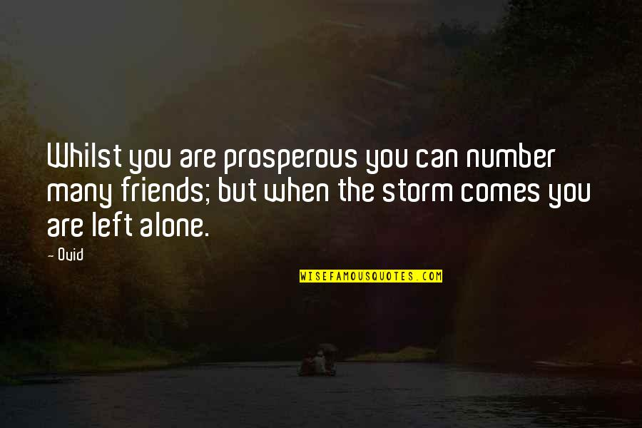 Number Of Friends Quotes By Ovid: Whilst you are prosperous you can number many