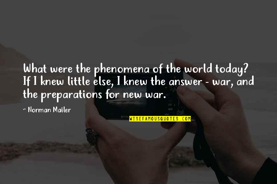 Ny Islanders Quotes By Norman Mailer: What were the phenomena of the world today?