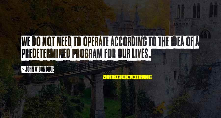 O.a.r. Quotes By John O'Donohue: We do not need to operate according to