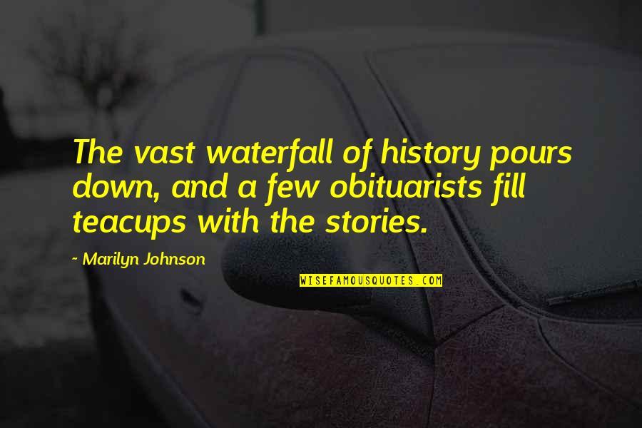 Obituarists Quotes By Marilyn Johnson: The vast waterfall of history pours down, and
