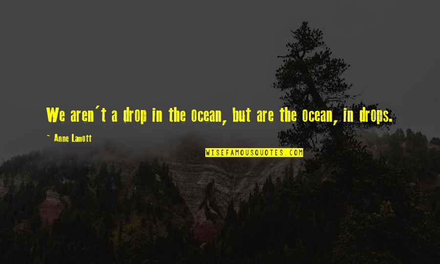Ocean Drops Quotes By Anne Lamott: We aren't a drop in the ocean, but