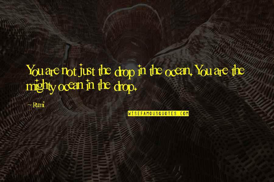 Ocean Drops Quotes By Rumi: You are not just the drop in the