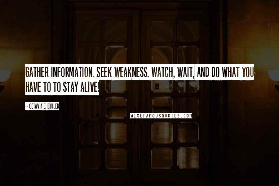 Octavia E. Butler quotes: Gather information. Seek weakness. Watch, wait, and do what you have to to stay alive!
