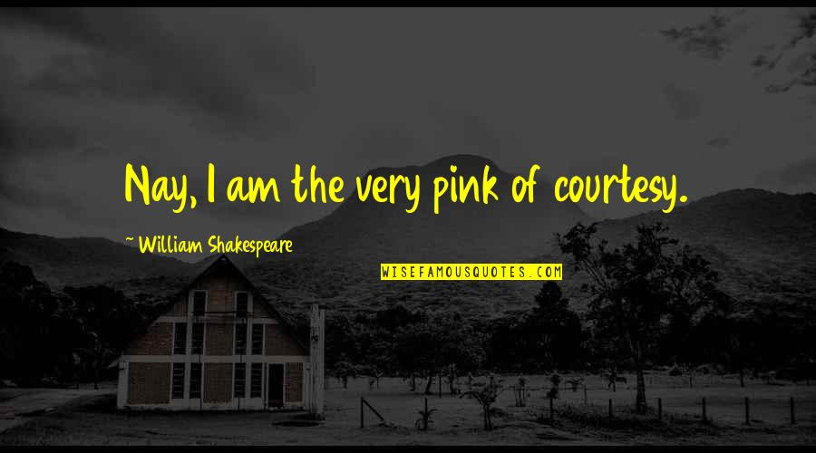 Of Romeo And Juliet Quotes By William Shakespeare: Nay, I am the very pink of courtesy.
