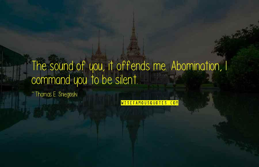 Offends Quotes By Thomas E. Sniegoski: The sound of you, it offends me. Abomination,