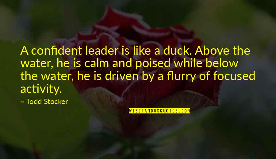 Office Suggestion Box Quotes By Todd Stocker: A confident leader is like a duck. Above