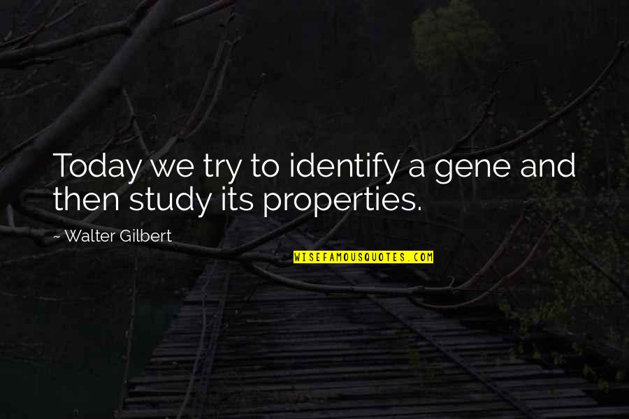 Ofili's Quotes By Walter Gilbert: Today we try to identify a gene and