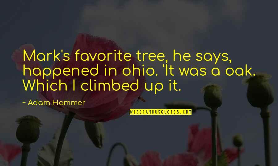 Ohio Quotes By Adam Hammer: Mark's favorite tree, he says, happened in ohio.