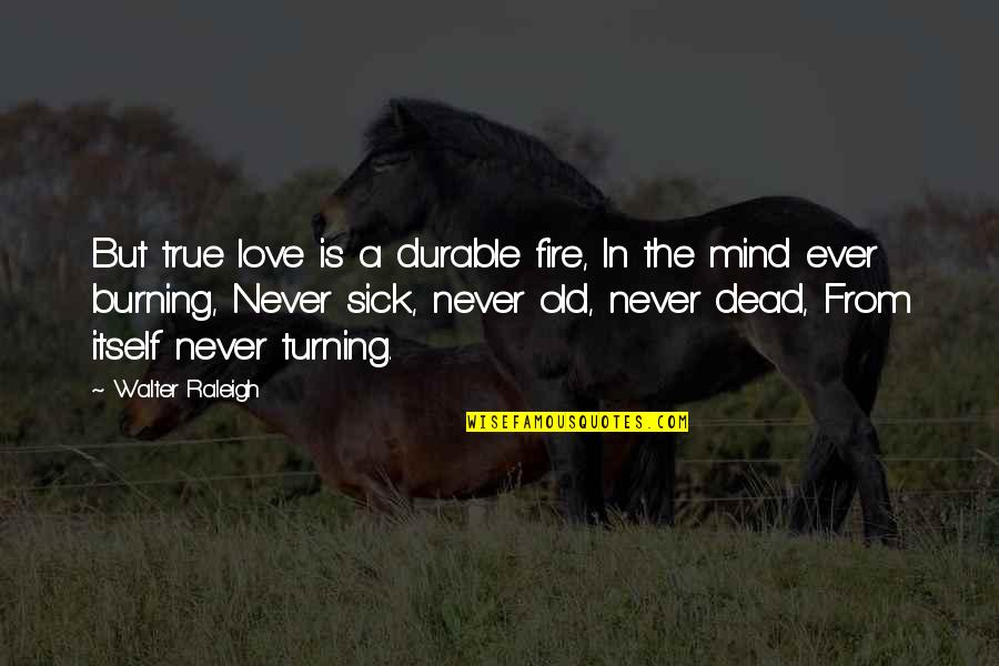 Old But True Quotes By Walter Raleigh: But true love is a durable fire, In