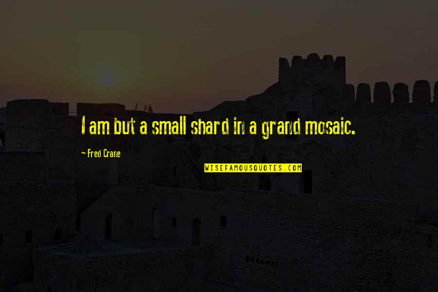 Old Derbyshire Quotes By Fred Crane: I am but a small shard in a