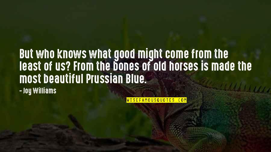 Old Is Beautiful Quotes By Joy Williams: But who knows what good might come from