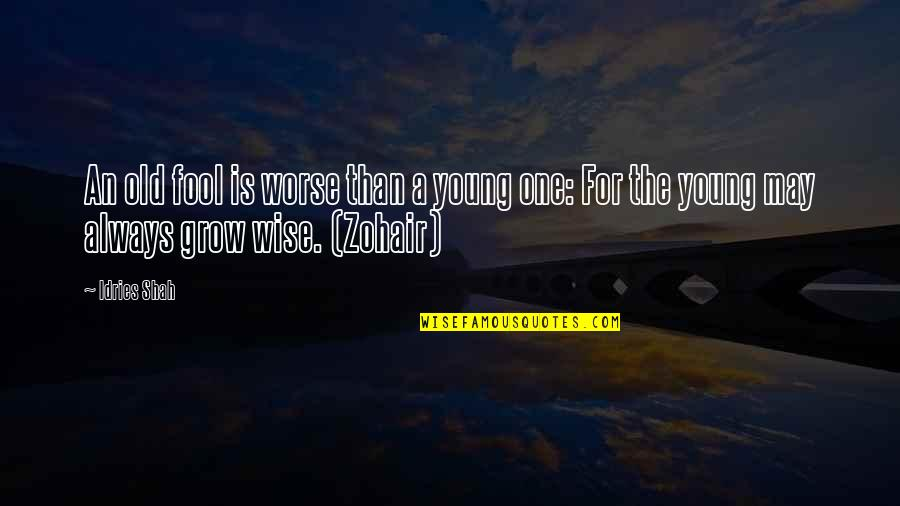 Old Is Wise Quotes By Idries Shah: An old fool is worse than a young