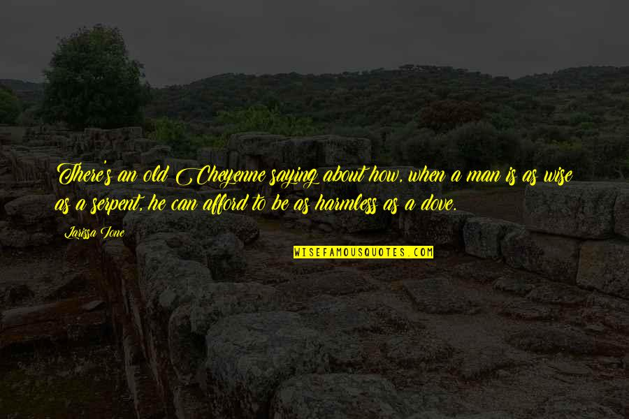 Old Is Wise Quotes By Larissa Ione: There's an old Cheyenne saying about how, when