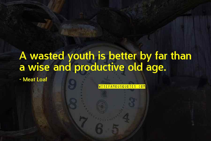 Old Is Wise Quotes By Meat Loaf: A wasted youth is better by far than