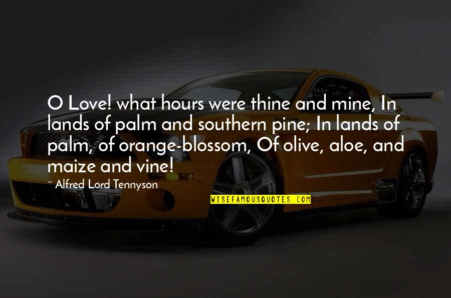 Olive You Quotes By Alfred Lord Tennyson: O Love! what hours were thine and mine,
