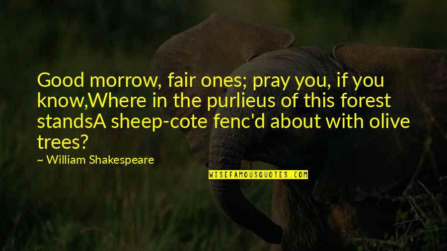 Olive You Quotes By William Shakespeare: Good morrow, fair ones; pray you, if you