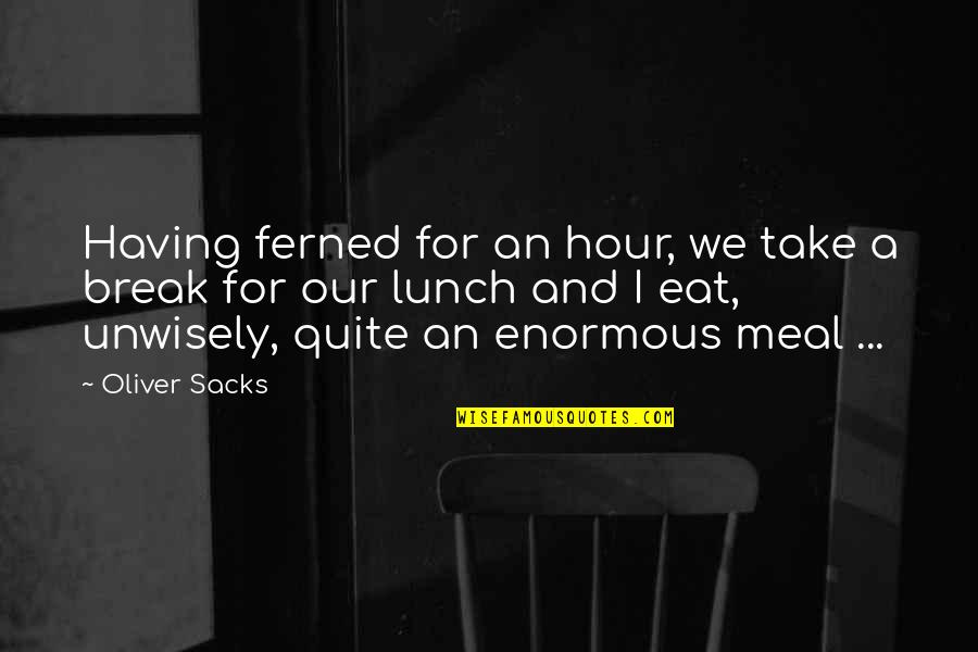 Oliver Sacks Quotes By Oliver Sacks: Having ferned for an hour, we take a