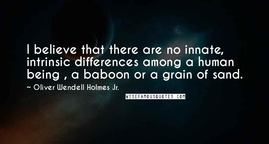 Oliver Wendell Holmes Jr. quotes: I believe that there are no innate, intrinsic differences among a human being , a baboon or a grain of sand.