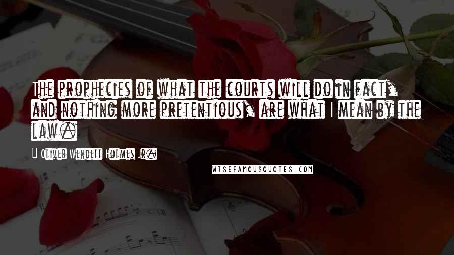 Oliver Wendell Holmes Jr. quotes: The prophecies of what the courts will do in fact, and nothing more pretentious, are what I mean by the law.