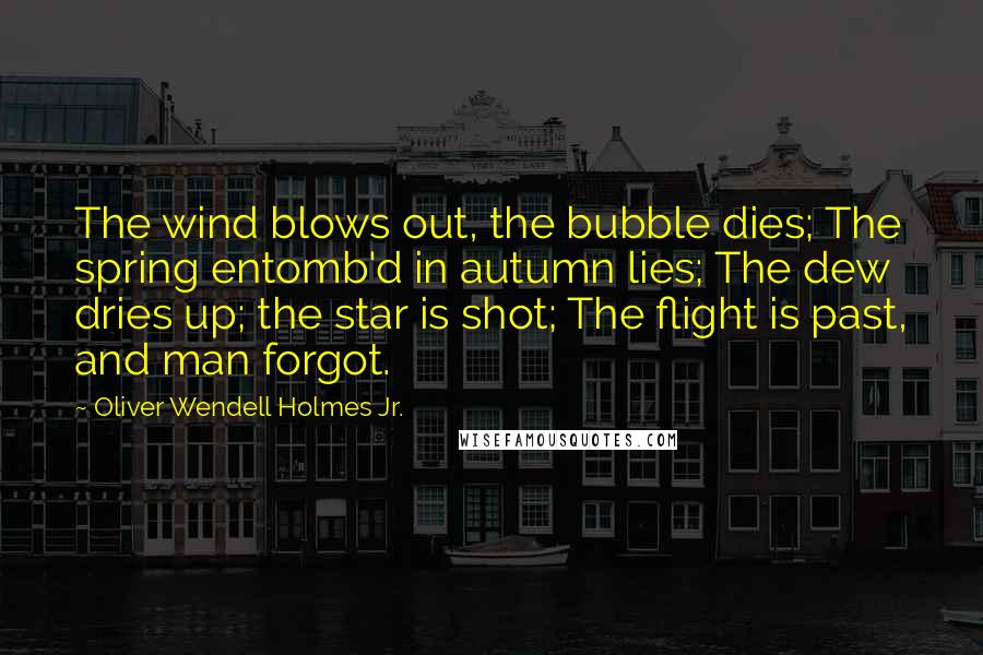 Oliver Wendell Holmes Jr. quotes: The wind blows out, the bubble dies; The spring entomb'd in autumn lies; The dew dries up; the star is shot; The flight is past, and man forgot.