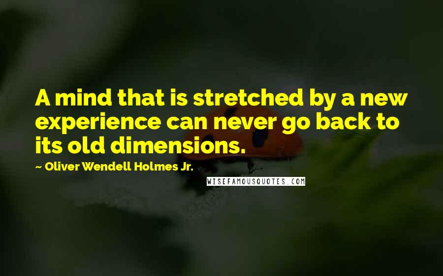 Oliver Wendell Holmes Jr. quotes: A mind that is stretched by a new experience can never go back to its old dimensions.