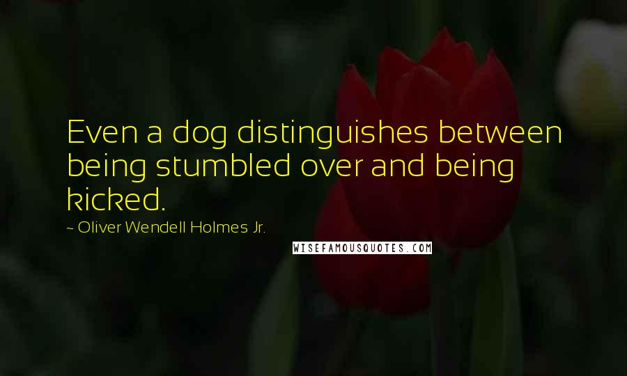 Oliver Wendell Holmes Jr. quotes: Even a dog distinguishes between being stumbled over and being kicked.