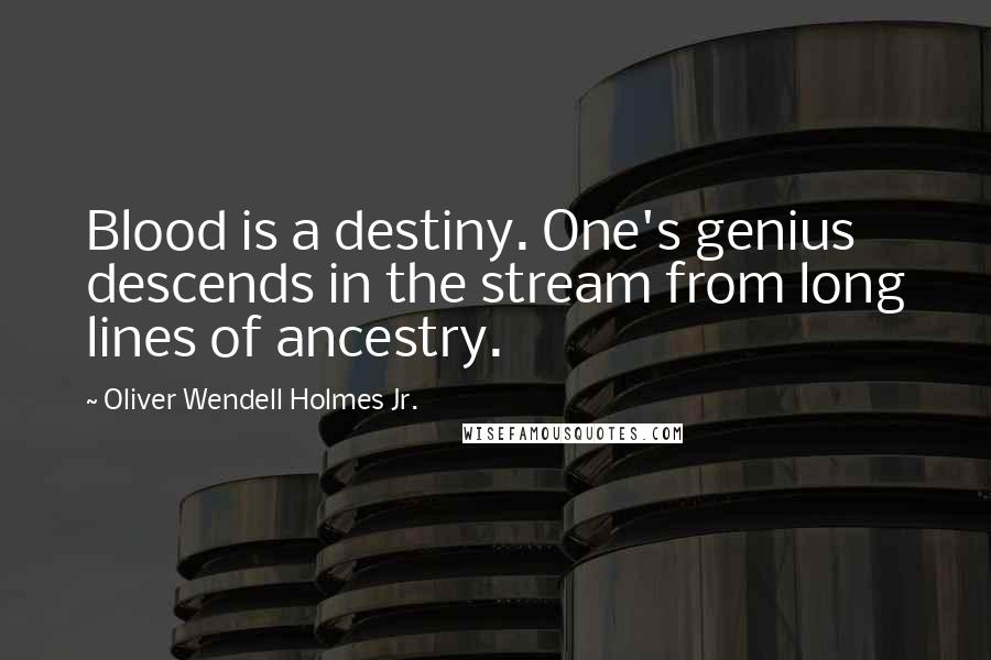 Oliver Wendell Holmes Jr. quotes: Blood is a destiny. One's genius descends in the stream from long lines of ancestry.