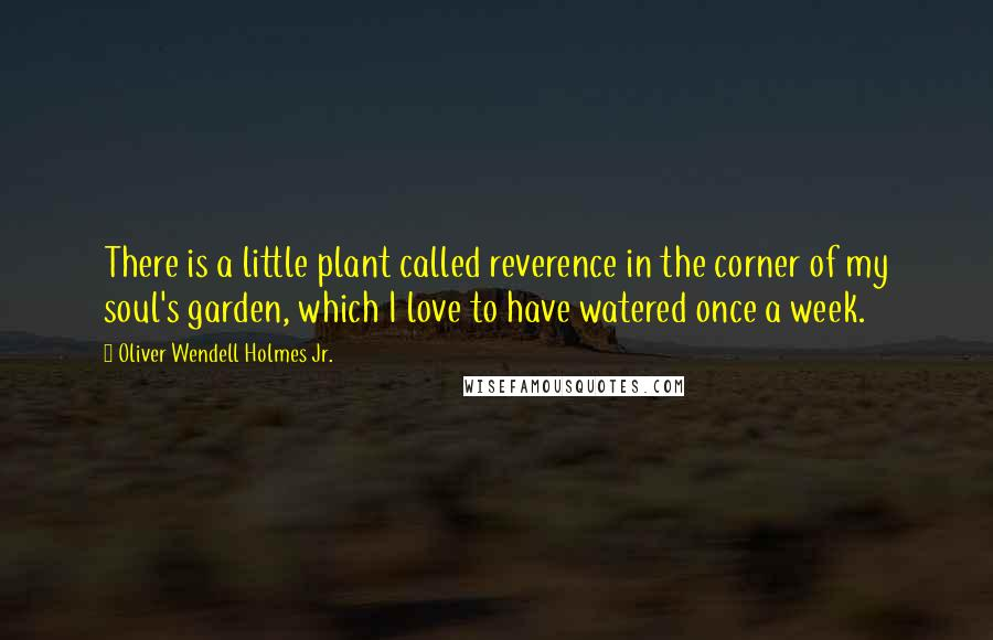 Oliver Wendell Holmes Jr. quotes: There is a little plant called reverence in the corner of my soul's garden, which I love to have watered once a week.