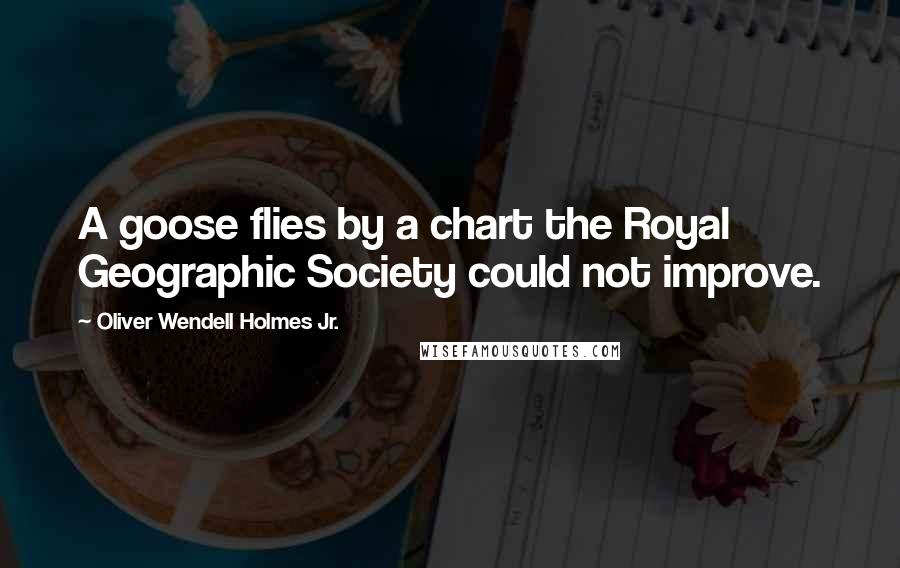 Oliver Wendell Holmes Jr. quotes: A goose flies by a chart the Royal Geographic Society could not improve.