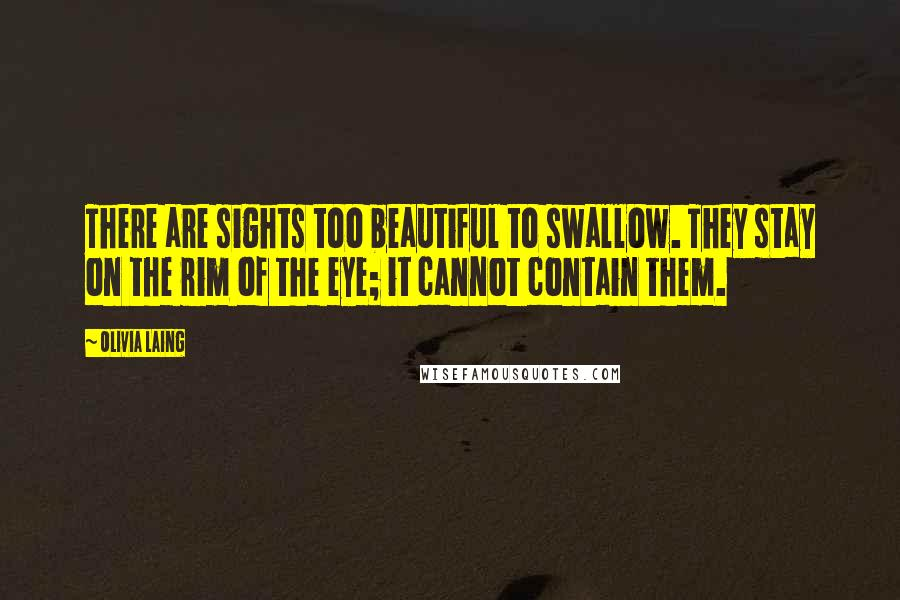 Olivia Laing quotes: There are sights too beautiful to swallow. They stay on the rim of the eye; it cannot contain them.