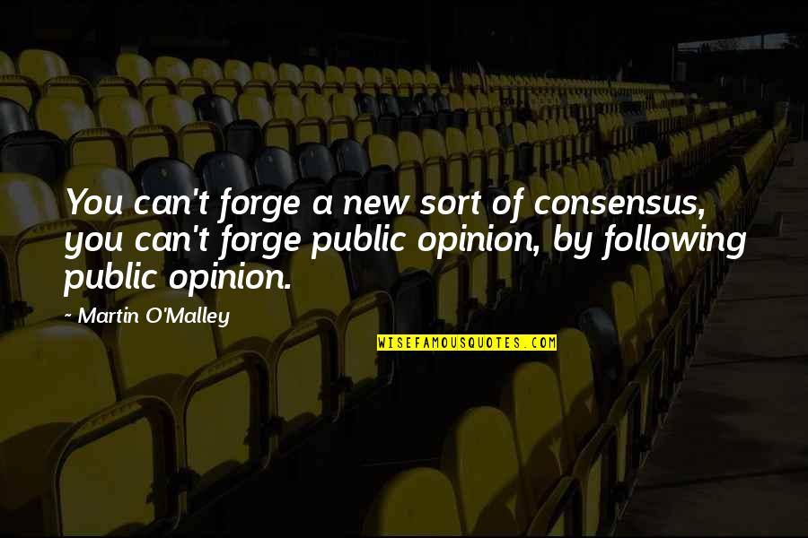 O'malley Quotes By Martin O'Malley: You can't forge a new sort of consensus,