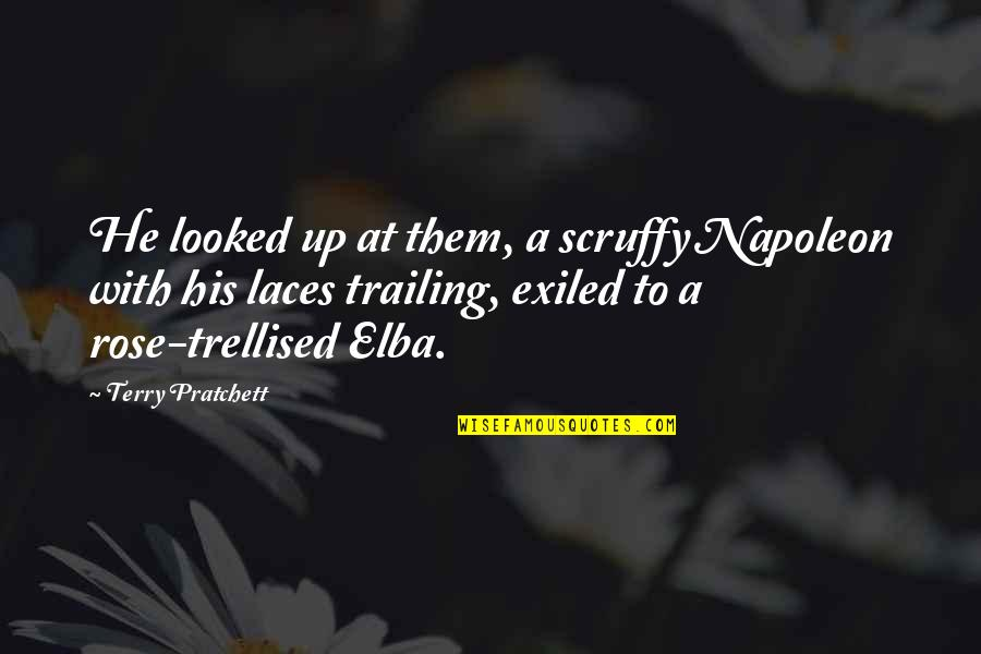 Omens Quotes By Terry Pratchett: He looked up at them, a scruffy Napoleon