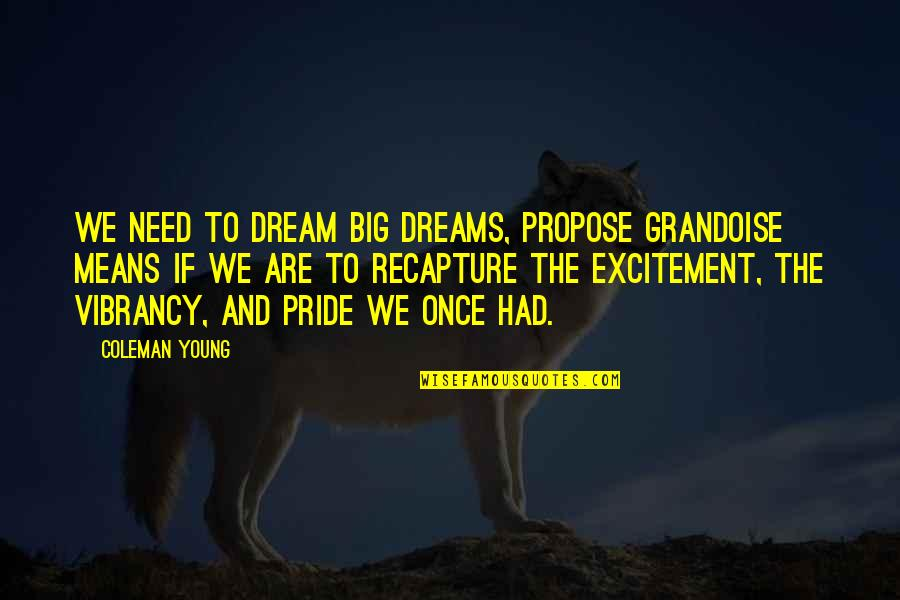 Once I Was Young Quotes By Coleman Young: We need to dream big dreams, propose grandoise