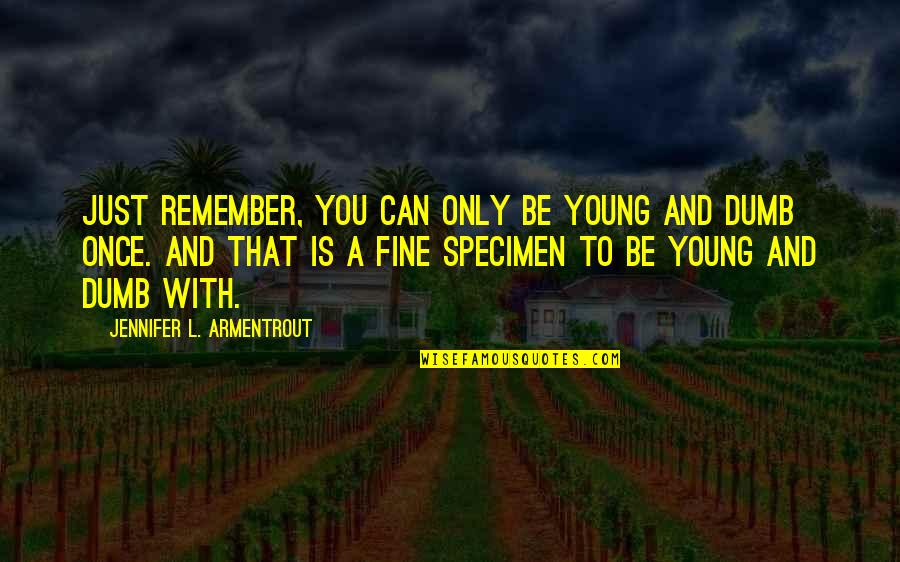 Once I Was Young Quotes By Jennifer L. Armentrout: Just remember, you can only be young and
