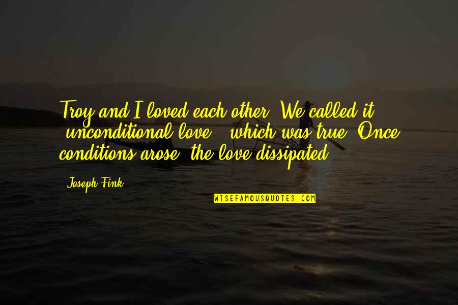Once Was Love Quotes By Joseph Fink: Troy and I loved each other. We called