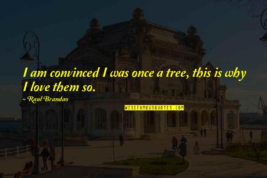 Once Was Love Quotes By Raul Brandao: I am convinced I was once a tree,