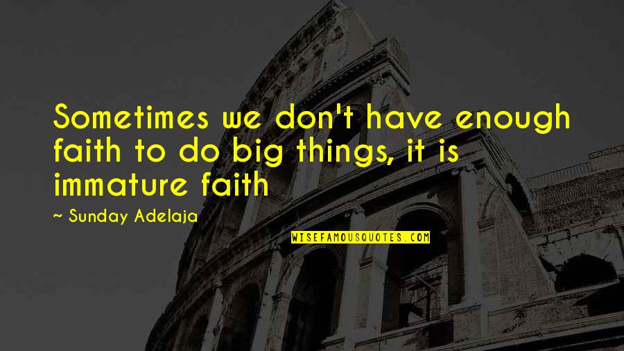 Oncological Quotes By Sunday Adelaja: Sometimes we don't have enough faith to do