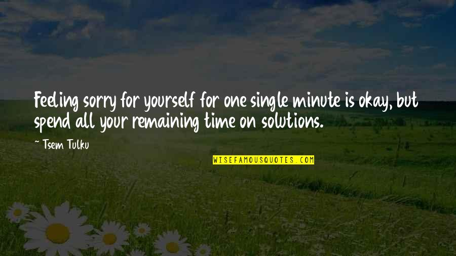One Minute At A Time Quotes By Tsem Tulku: Feeling sorry for yourself for one single minute