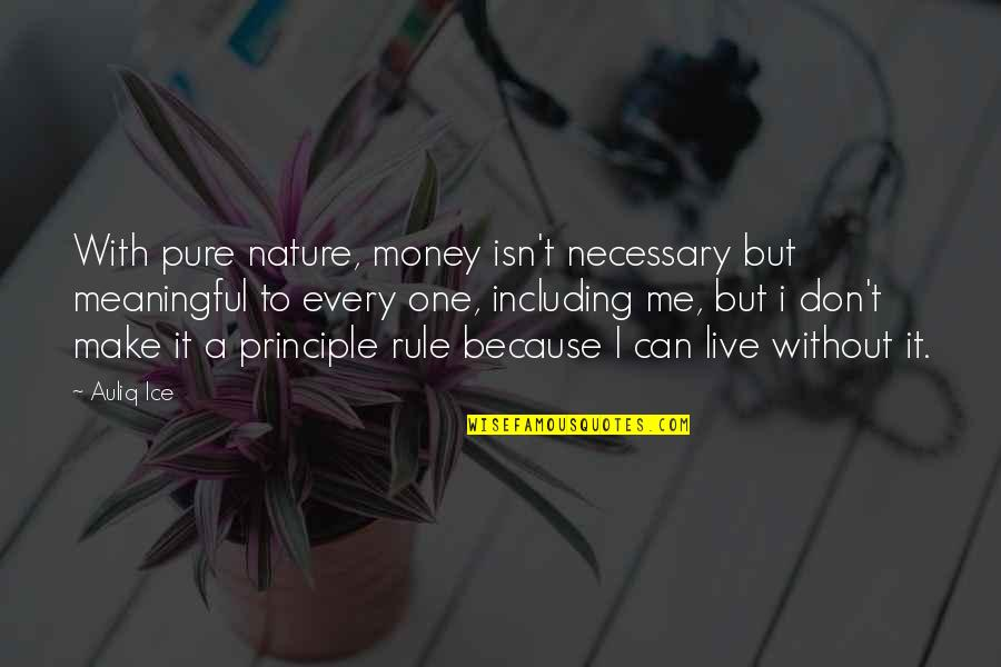 One With Nature Quotes By Auliq Ice: With pure nature, money isn't necessary but meaningful