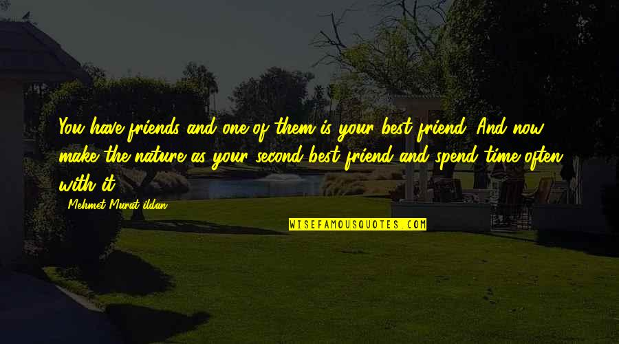 One With Nature Quotes By Mehmet Murat Ildan: You have friends and one of them is