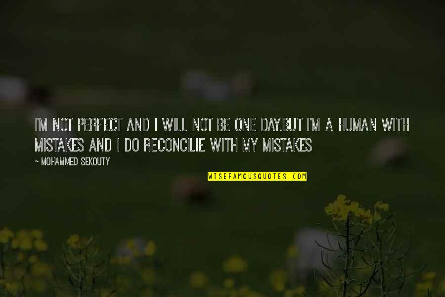 One With Nature Quotes By Mohammed Sekouty: I'm not perfect and I will not be